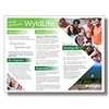 WyldLife Flyer (in it with kids) - Spanish (PDF)